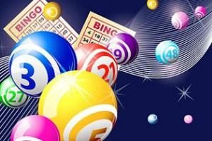 bingo-