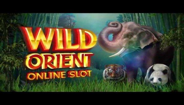 Planet 7 casino no deposit bonus codes 2017