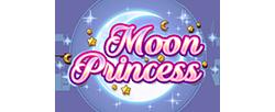 moon-princess  slot cover